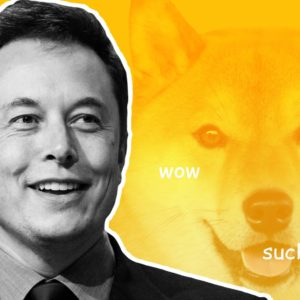 Black and white picture of Elon Musk with a Dogecoin Shiba Inu dog behind him