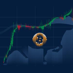 bitcoin bull cycle