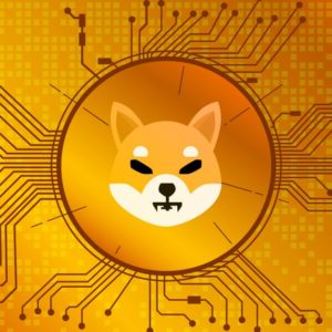 Picture of a Shiba Inu token with circuit board-like markings around it