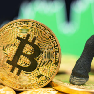 Analyst Mike McGlone Predicts 'Refreshed Bull Market' for Bitcoin, Price Heading Towards $100K