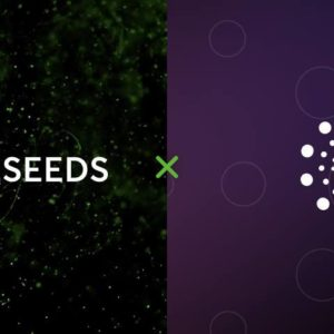 Nodeseeds Launches Three-Tier Membership to Ensure Transparency and Fair Allocation of Projects