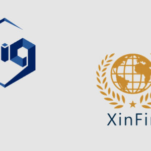 Blockchain Intelligence Group to support XinFin (XDC) on its crypto investigation platform