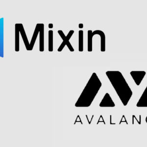 Mixin to provide staking services to Avalanche ecosystem as validator