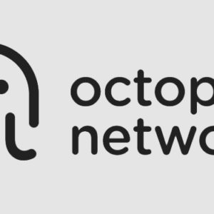 Multi-chain crypto protocol Octopus Network secures $5M in Series A funding