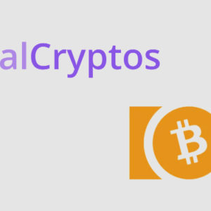 P2P crypto marketplace LocalCryptos adds support for Bitcoin Cash (BCH)