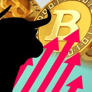 Picture of the shadow of a bull next to five red arrows pointed upwards towards gold bitcoins stacked together