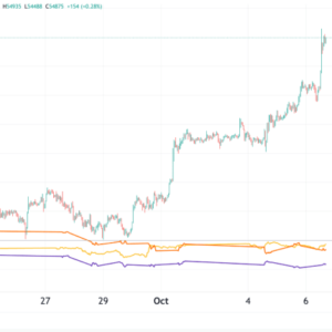 In the last few days, bitcoin has shown the beginnings of a long-awaited decoupling point.