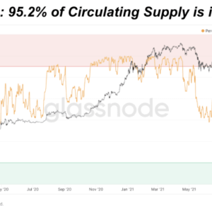 As we approach bitcoin price all-time highs, we start to see the percentage of circulating supply in profit reach 100%.