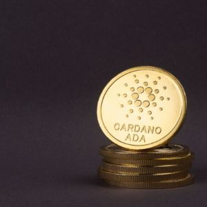 Picture of a old Cardano coin standing on a stack of coins