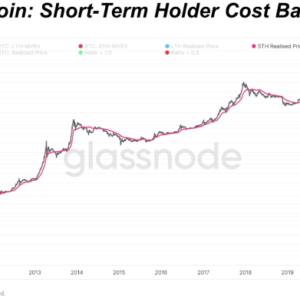 Examining the dynamics of short-term holders during bitcoin bull markets and bear markets.
