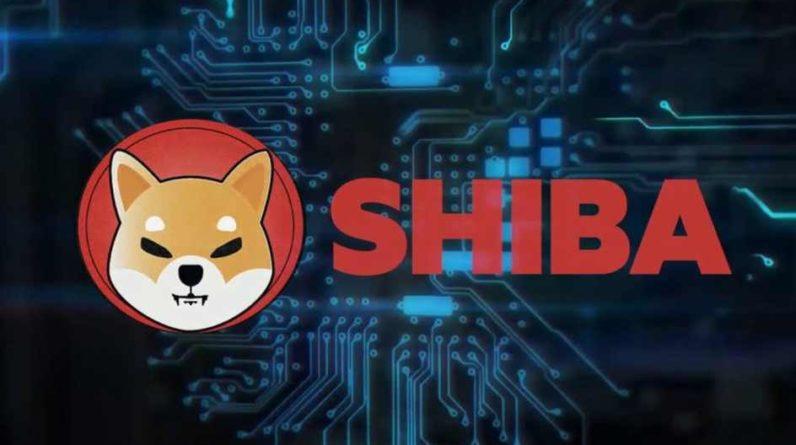 Picture of a Shiba Inu logo